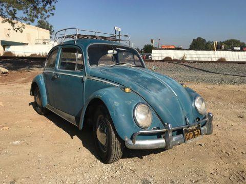 1965 Volkswagen Beetle / Classic Bug for sale