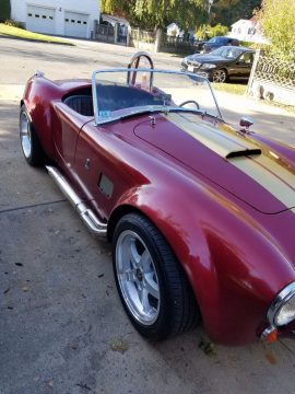 1965 Shelby Cobra – Great condition for sale